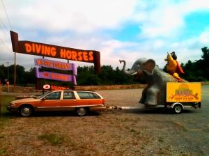 DIVING HORSES-jds